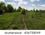 old railroad grass bushes | Shutterstock . vector #656758549