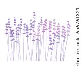 vector floral background with... | Shutterstock .eps vector #656761321