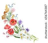 watercolor summer grasses... | Shutterstock . vector #656764387