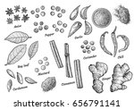 spice collection illustration ... | Shutterstock .eps vector #656791141