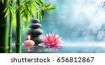 spa   natural alternative... | Shutterstock . vector #656812867