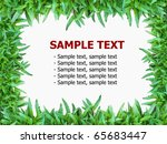 green grass isolated on white... | Shutterstock . vector #65683447