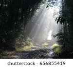 sun rays   Shutterstock . vector #656855419
