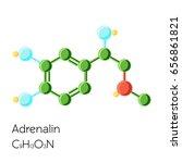 adrenalin  adrenaline ... | Shutterstock .eps vector #656861821