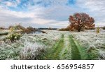 autumn landscape. red wood on... | Shutterstock . vector #656954857