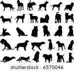 Stock vector dog silhouette 6570046
