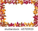 orange leaves on white... | Shutterstock . vector #65705923