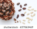stone pine cone with seeds and... | Shutterstock . vector #657063469