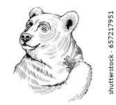 vector black and white bear... | Shutterstock .eps vector #657217951