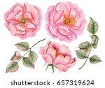 Watercolor Set Of Rosehip...
