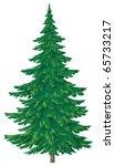christmas green fur tree ... | Shutterstock . vector #65733217