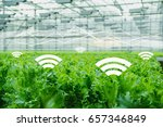 internet of things in... | Shutterstock . vector #657346849