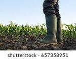 farmer in rubber boots standing ... | Shutterstock . vector #657358951