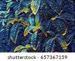 tropical foliage plant digital... | Shutterstock . vector #657367159