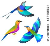 stylized birds   racquet tailed ... | Shutterstock .eps vector #657405814