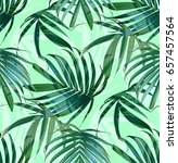 vector palm frond. tropical... | Shutterstock .eps vector #657457564