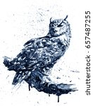 owl 2 black white | Shutterstock . vector #657487255
