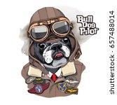portrait of the french bulldog... | Shutterstock .eps vector #657488014