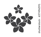 spa salon plumeria flowers... | Shutterstock .eps vector #657496591