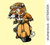 angry tiger driving a vintage... | Shutterstock .eps vector #657504334