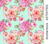 colorful roses pattern... | Shutterstock . vector #657547501