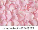 Stock photo rose petals isolated background 657602824