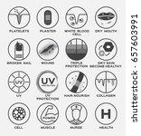 skin icon vector   platelets... | Shutterstock .eps vector #657603991