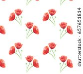 Pattern From Red Poppies With...