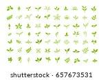 set of leaves design elements....   Shutterstock .eps vector #657673531