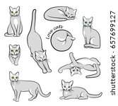 big vector set of cats in... | Shutterstock .eps vector #657699127