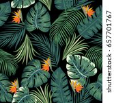tropical leaves and flowers of...   Shutterstock .eps vector #657701767