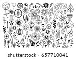 hand drawn flowers and floral... | Shutterstock .eps vector #657710041