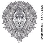 lion head hand drawn in lines... | Shutterstock .eps vector #657731821