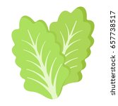 lettuce flat icon  vegetable... | Shutterstock .eps vector #657738517
