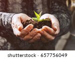human hands are holding the... | Shutterstock . vector #657756049