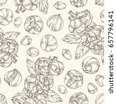 seamless pattern with guarana....   Shutterstock .eps vector #657796141