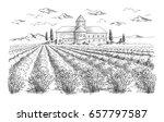 lavender field summer sunset... | Shutterstock .eps vector #657797587