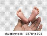 baby's feet in daddy's hand... | Shutterstock . vector #657846805