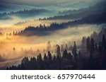Misty Mountain Forest Landscap...