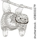 sloth on a branch coloring book ... | Shutterstock . vector #658033279