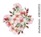 watercolor sakura flowers... | Shutterstock . vector #658133521
