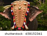decorated indian male elephant... | Shutterstock . vector #658152361