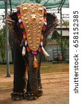 decorated indian male elephant... | Shutterstock . vector #658152385