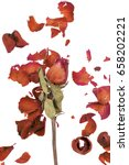 Dried Red Rose And Leaf On...