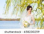 wedding. young beautiful bride... | Shutterstock . vector #658230259