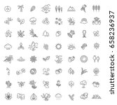 set of outline natural icons... | Shutterstock .eps vector #658236937