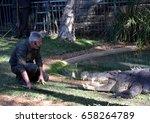 somersby  australia   may 28 ... | Shutterstock . vector #658264789