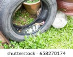 Used Tyres Potentially Store...