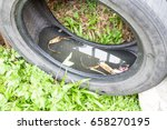 used tyres potentially store... | Shutterstock . vector #658270195