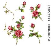 decorative hand drawn roses ... | Shutterstock .eps vector #658272817